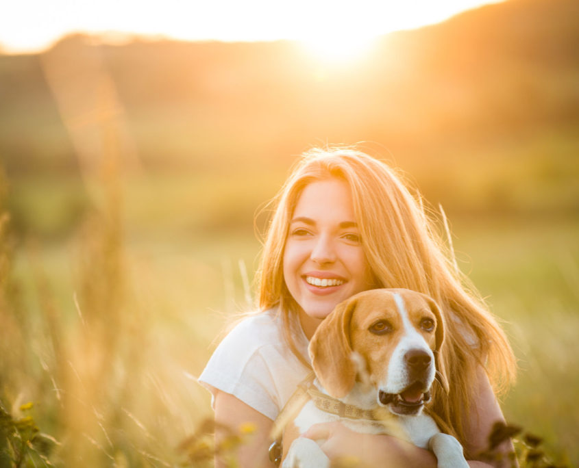 52571747 - teen girl having fun with beagle dog outdoor in nature at summer sunset