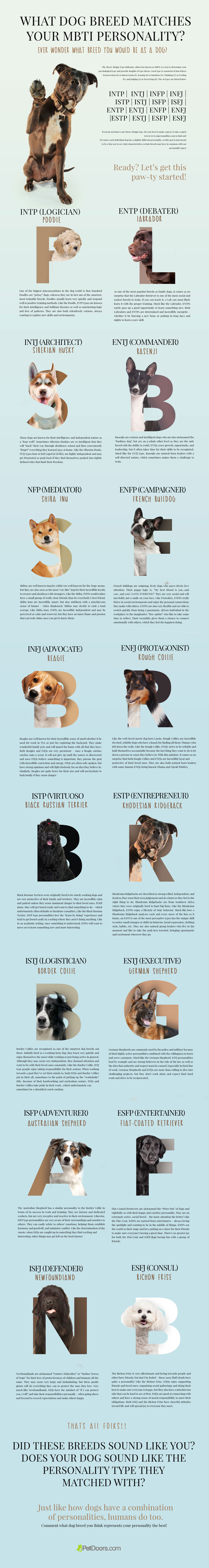 PetDoor_Infographic_MBTI_Test