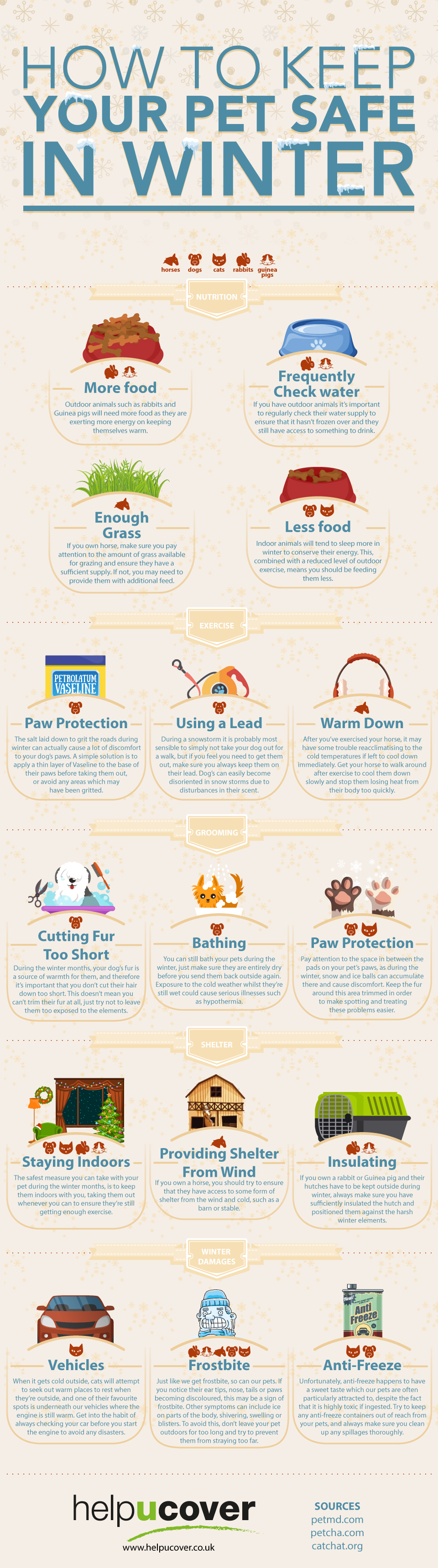 how-to-keep-your-pet-safe-in-winter-large