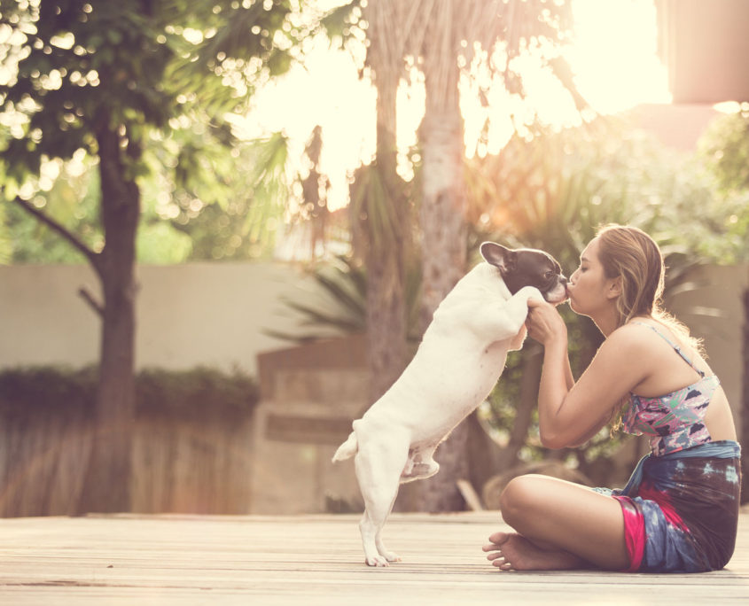 women hugging a dog and kiss. them playful and happiness.